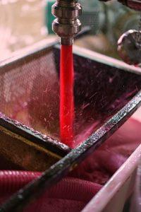 ccb-viticulture-pressage-141016-4
